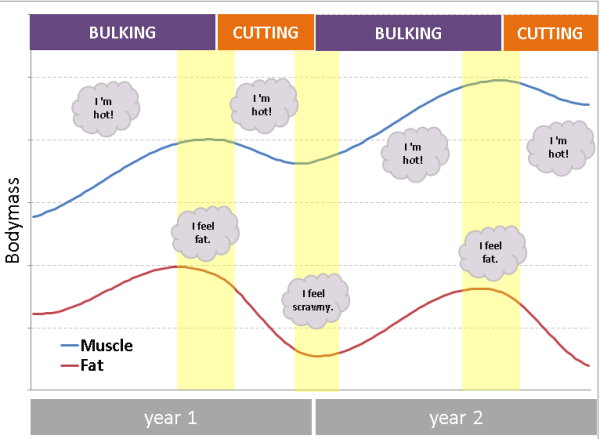 The Long-Term Bodybuilding Plan