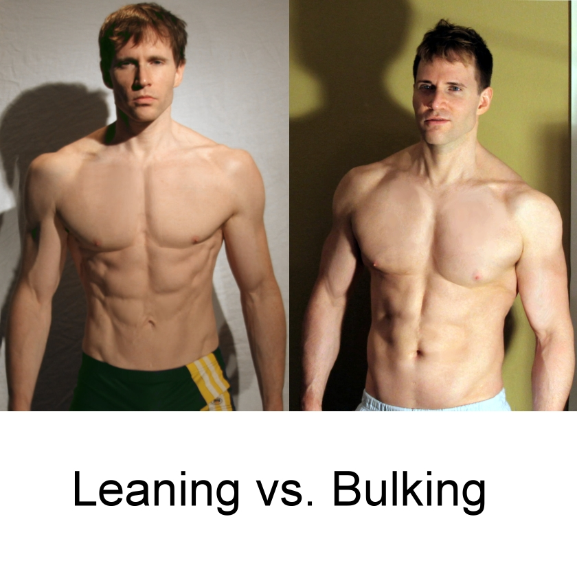 Old school bodybuilding cutting diet school building workout routine for bulking and cutting sport fatare malvernweather Images