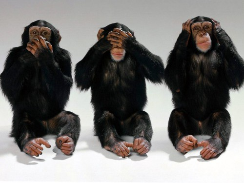 Hear no evil, see no evil, speak no evil.